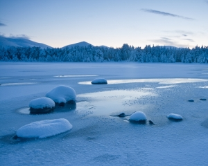 Winter at Loch Morlich II
