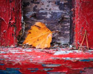 Lonesome Leaf, Blairs Loch